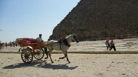Министерство туризма Египта