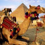 Стоит ли брать рубли в Египет?