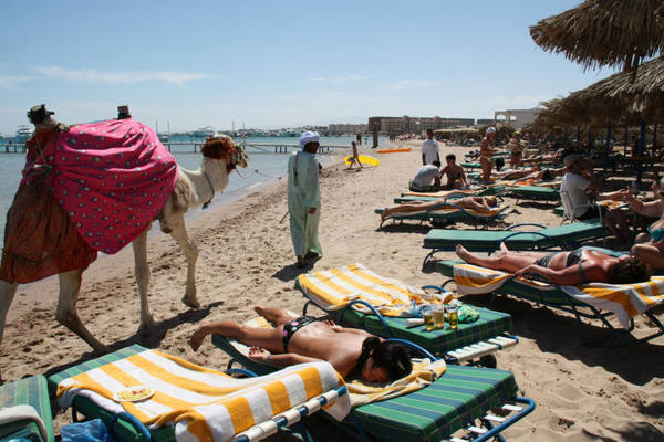 восстановления турпотока в Египет