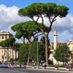 Обзор достопримечательностей Италии