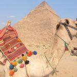 Самые популярные экскурсии из Шарм-эль-Шейха