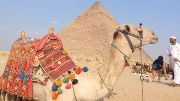 экскурсии из Шарм-эль-Шейха Египет